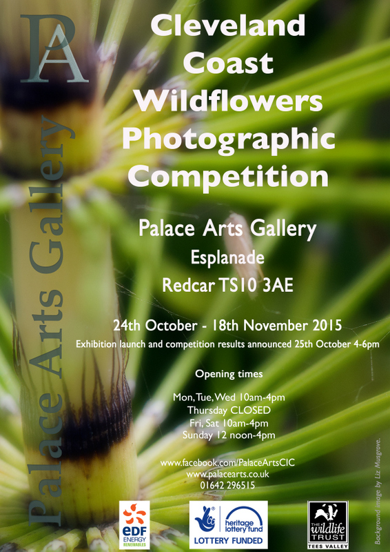Wildflower photo comp flyer